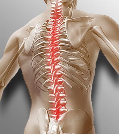 Позвоночник боли в области грудной отдел